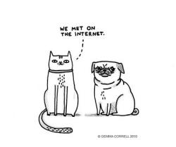 cat-gemma-correll-haha-illustration-internet-Favim.com-144975