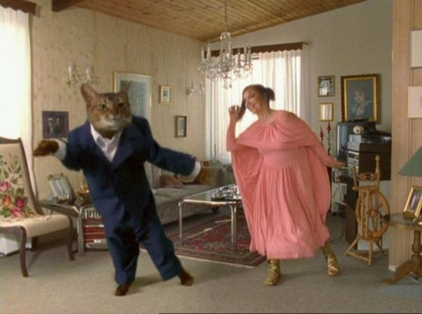 fd75ae7795b2a79398496270553f8fa0--grumpy-cat-dance